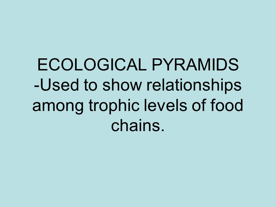 ECOLOGICAL PYRAMIDS -Used to show relationships among trophic levels of food chains.