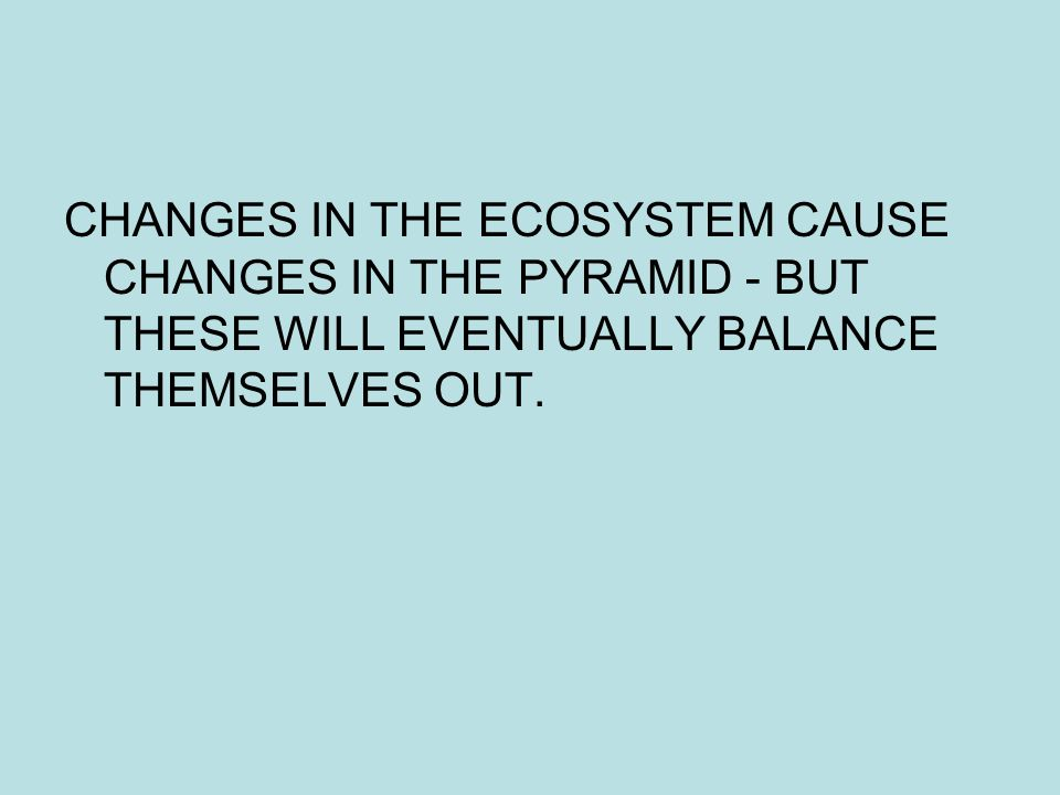 CHANGES IN THE ECOSYSTEM CAUSE CHANGES IN THE PYRAMID - BUT THESE WILL EVENTUALLY BALANCE THEMSELVES OUT.