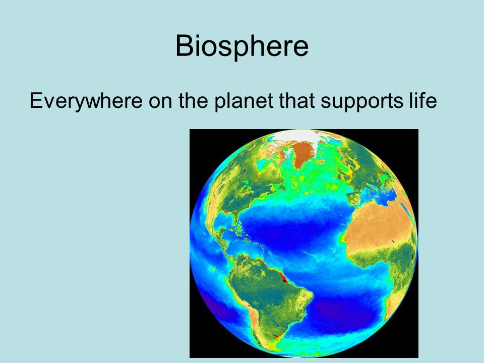 Biosphere Everywhere on the planet that supports life
