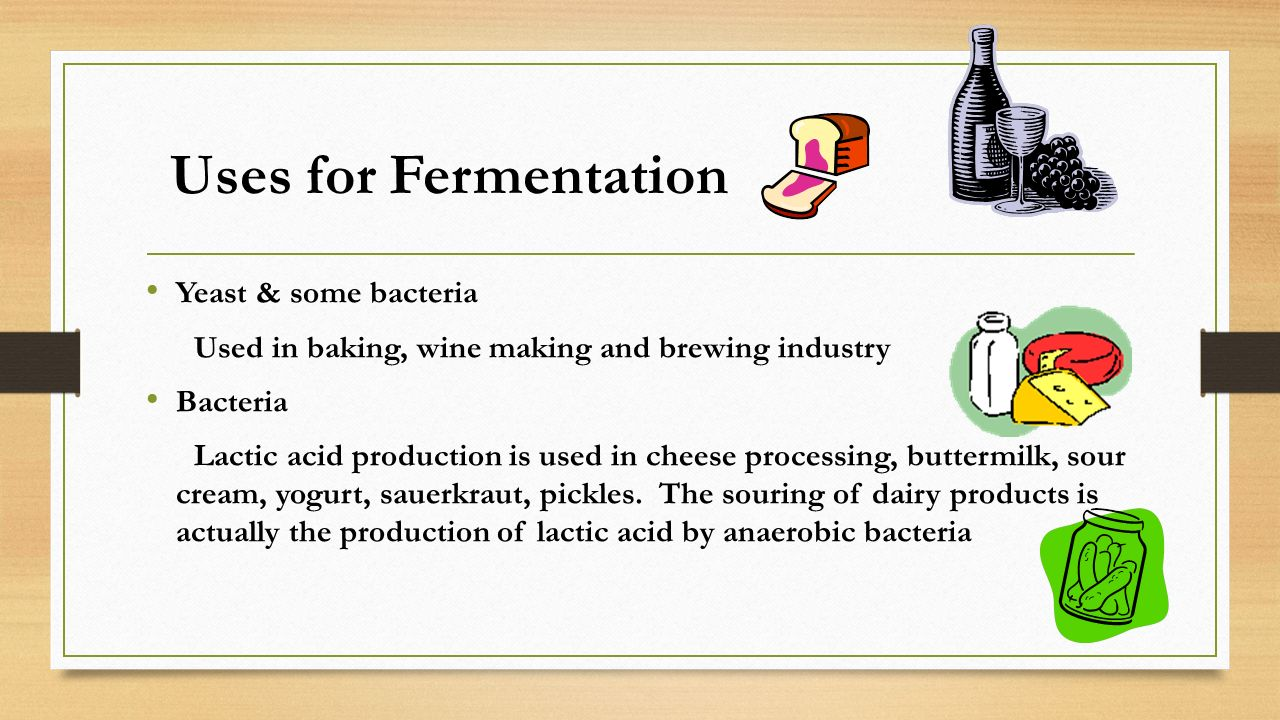 Uses for Fermentation Yeast & some bacteria