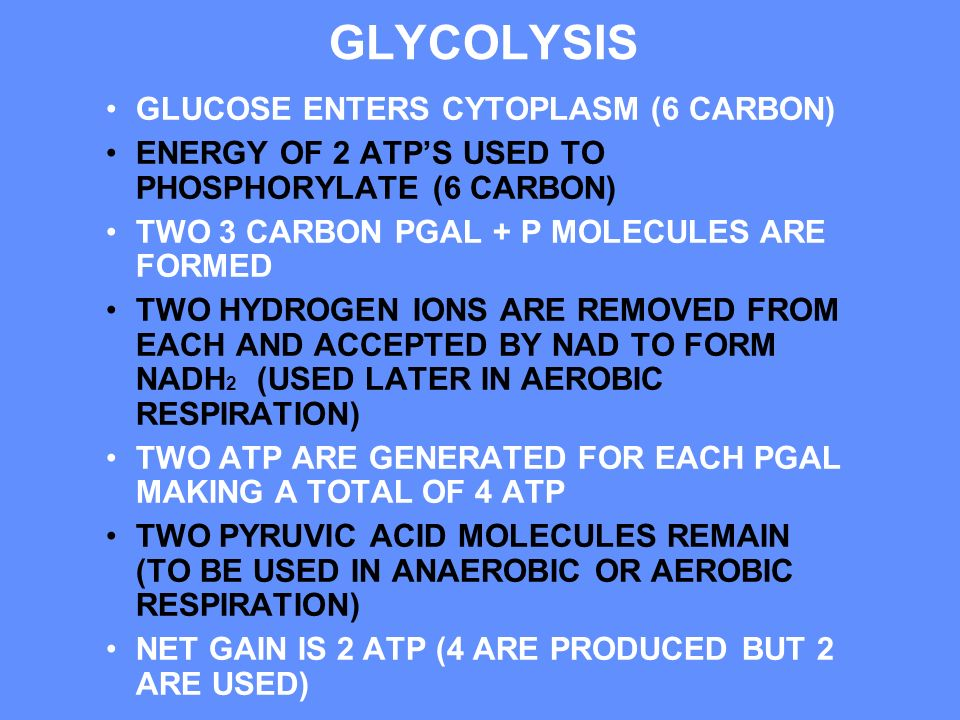 GLYCOLYSIS GLUCOSE ENTERS CYTOPLASM (6 CARBON)