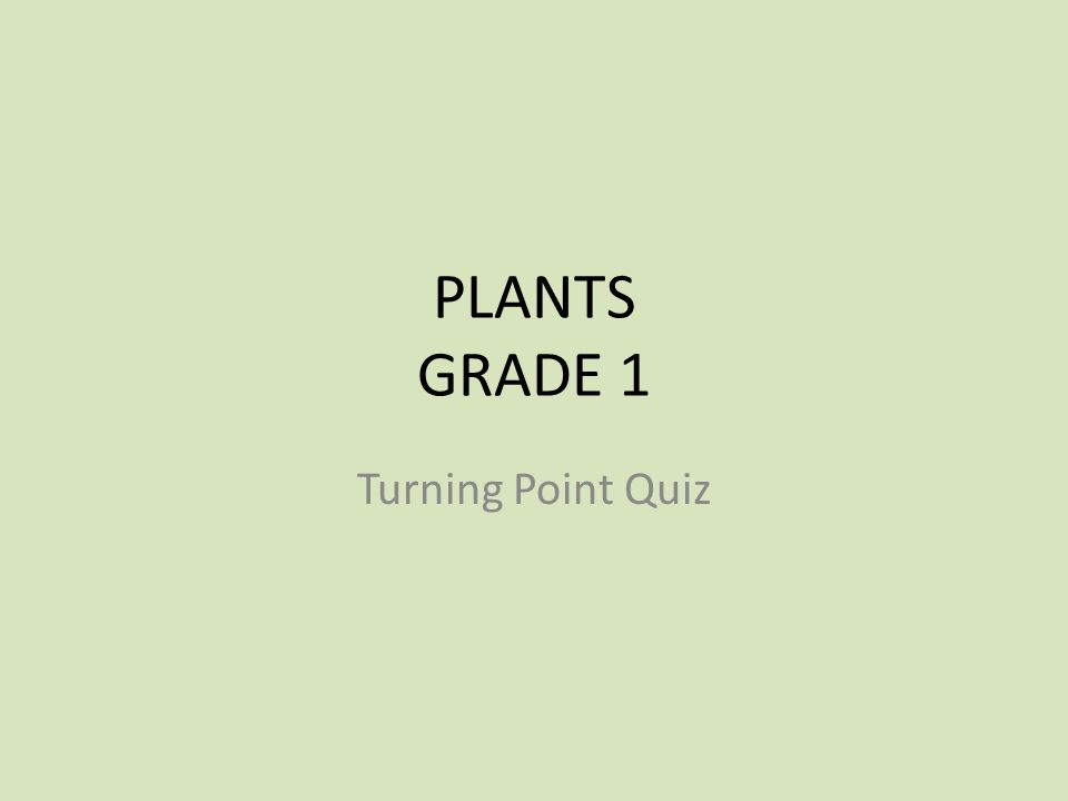 PLANTS GRADE 1 Turning Point Quiz