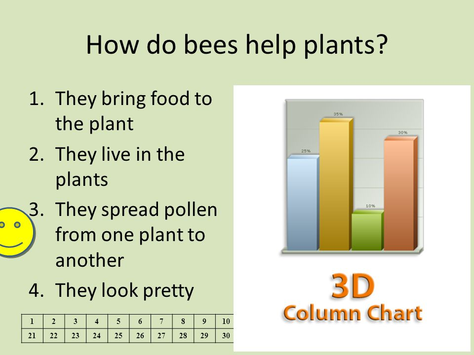 How do bees help plants They bring food to the plant