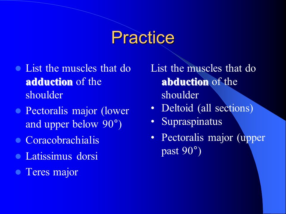 Shoulder Region Muscles Ppt Video Online Download