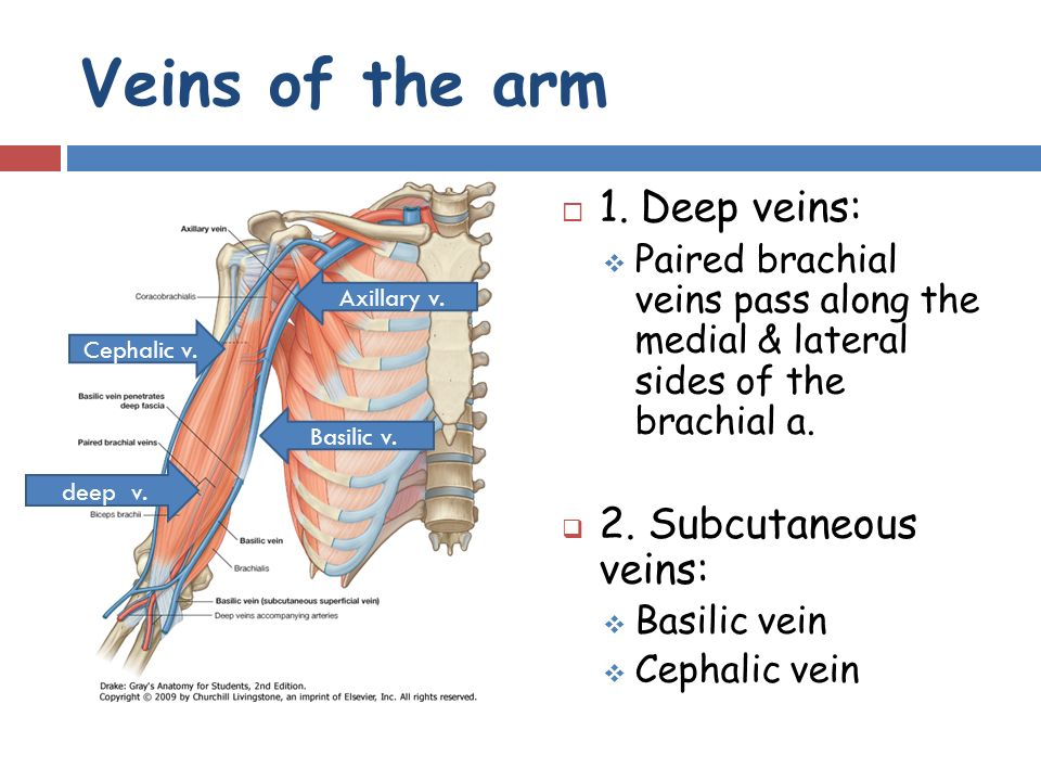 Windsor University School of Medicine - ppt video online download