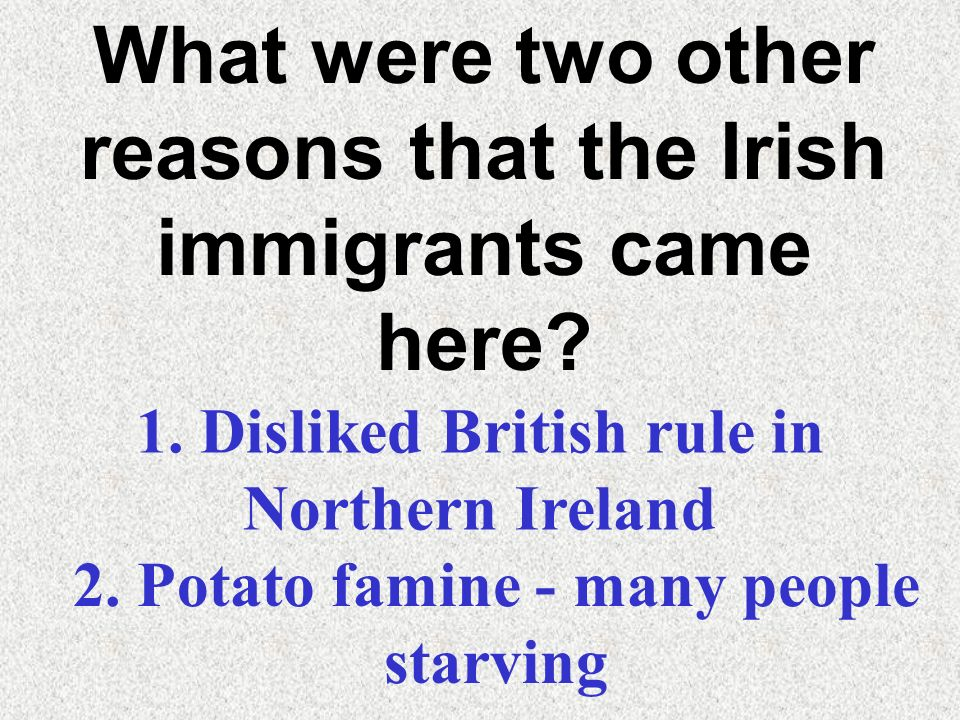 What were two other reasons that the Irish immigrants came here