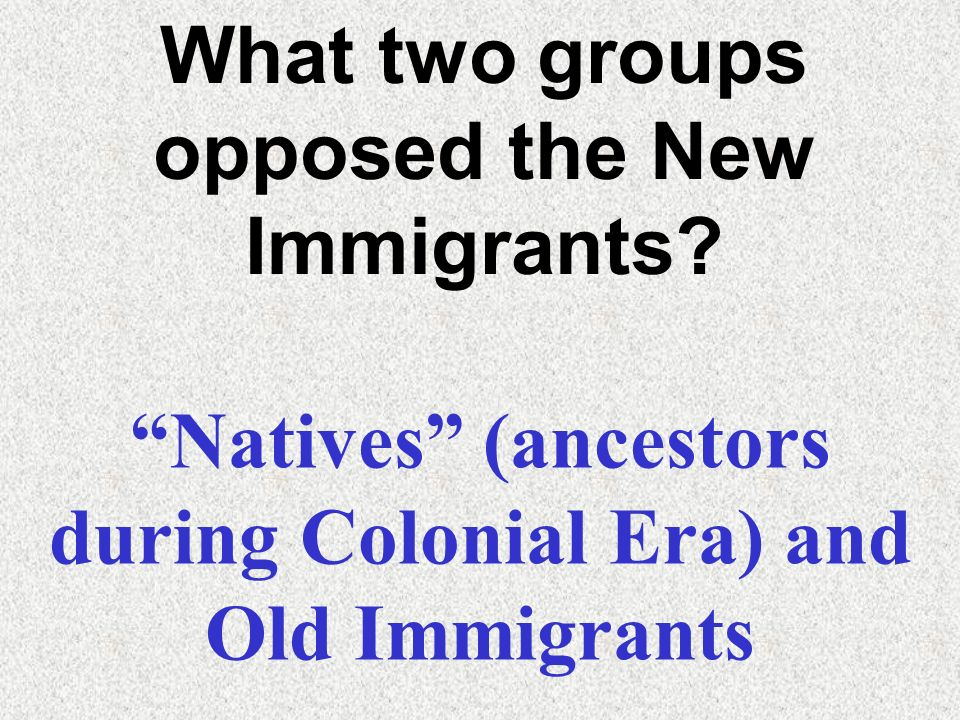 What two groups opposed the New Immigrants