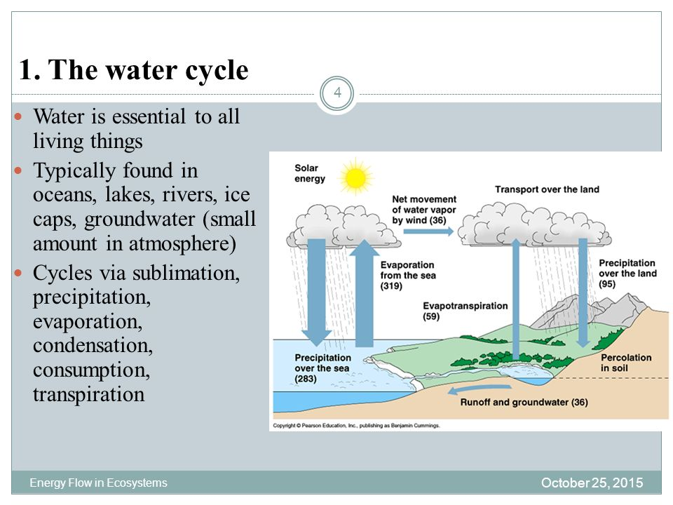 Biogeochemical cycles ppt download the water cycle water is essential to all living things ccuart Choice Image