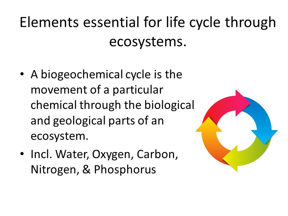Elements essential for life cycle through ecosystems.