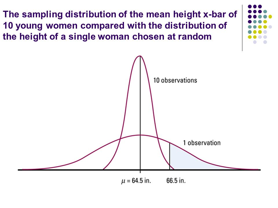 The sampling distribution of the mean height x-bar of 10 young women compared with the distribution of the height of a single woman chosen at random
