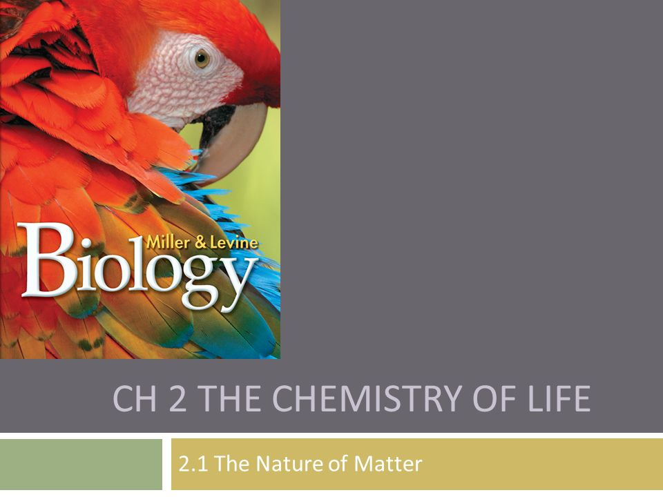 Ch 2 The Chemistry of Life