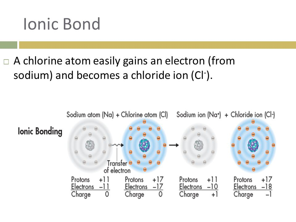Ionic Bond A chlorine atom easily gains an electron (from sodium) and becomes a chloride ion (Cl-).