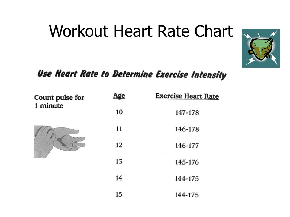 Fit Target Heart Rate Warm Up Workout Cool Down Goal Setting