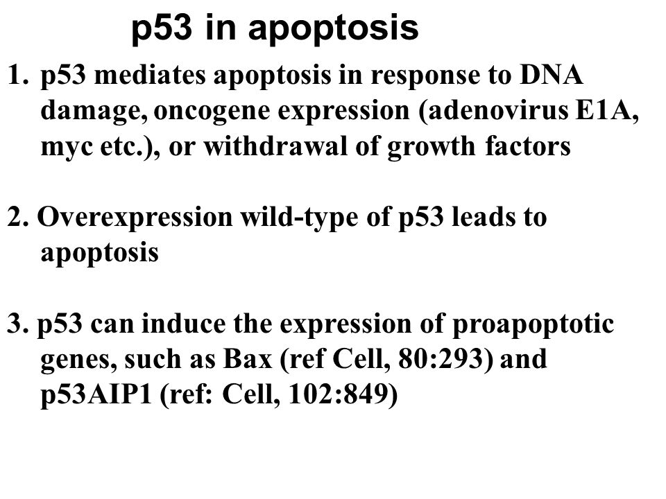 Apoptosis {cancer} steps examples pathway mechanism apoptosis vs.
