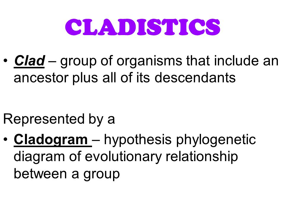 evolutionary relationships between organisms Phylogenetics is the study of evolutionary relationships and the history between species phylogenetic trees can be used to illustrate visit us for info on evolutionary relationships between organisms specifically find info here on theory of life evolution, evidence for evolution, fossils.