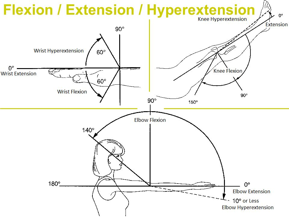Flexion / Extension / Hyperextension