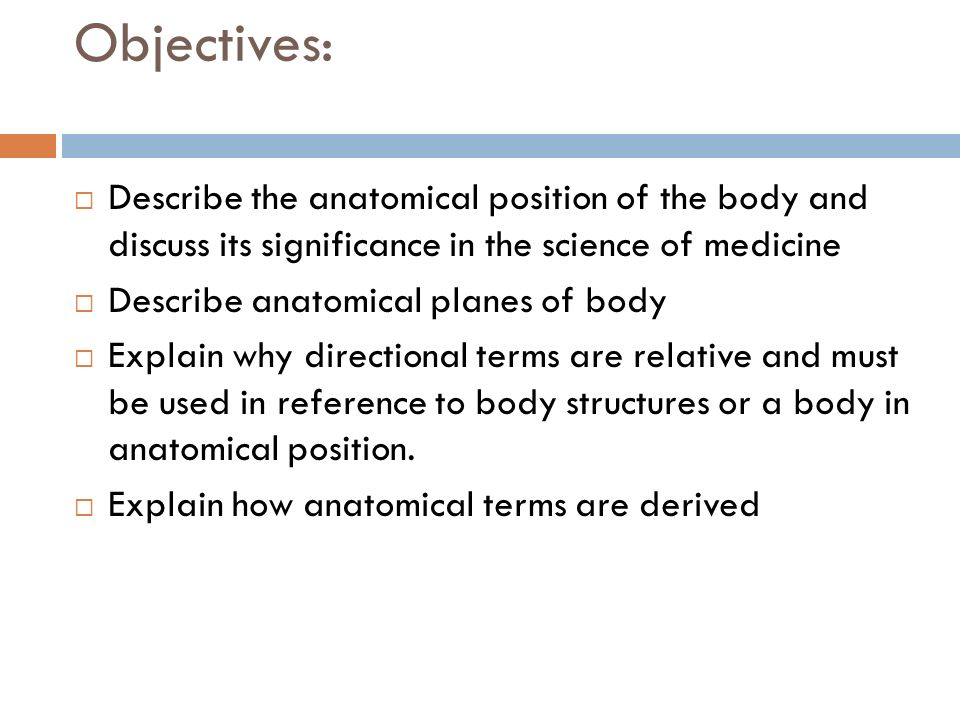 MEDICAL TERMINOLOGY ANATOMY - ppt video online download
