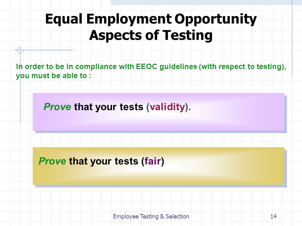 Equal Employment Opportunity Aspects of Testing