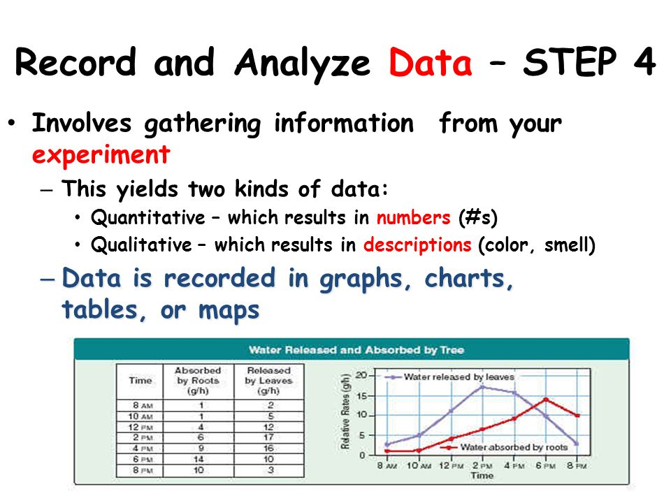 Record and Analyze Data – STEP 4