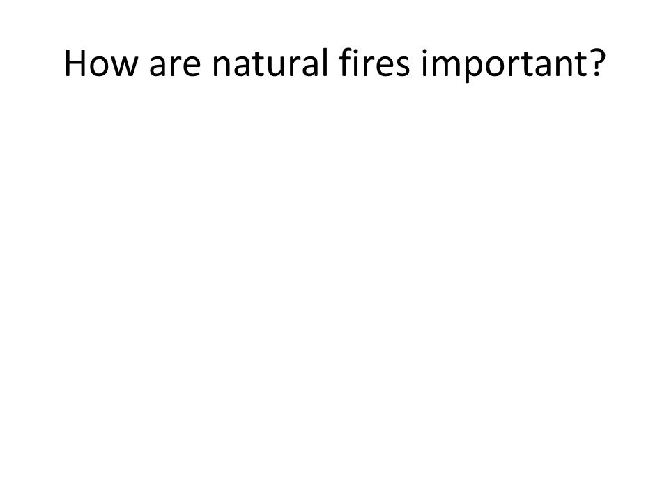 How are natural fires important