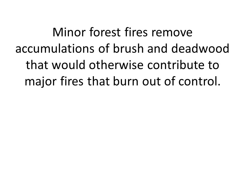 Minor forest fires remove accumulations of brush and deadwood that would otherwise contribute to major fires that burn out of control.