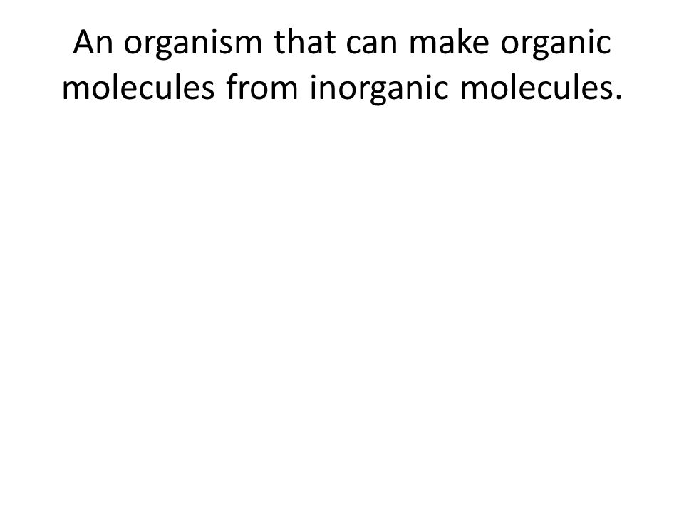 An organism that can make organic molecules from inorganic molecules.