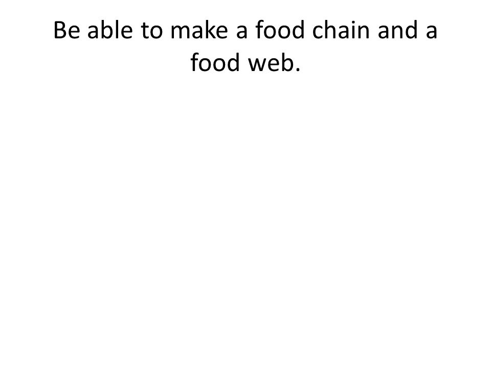 Be able to make a food chain and a food web.