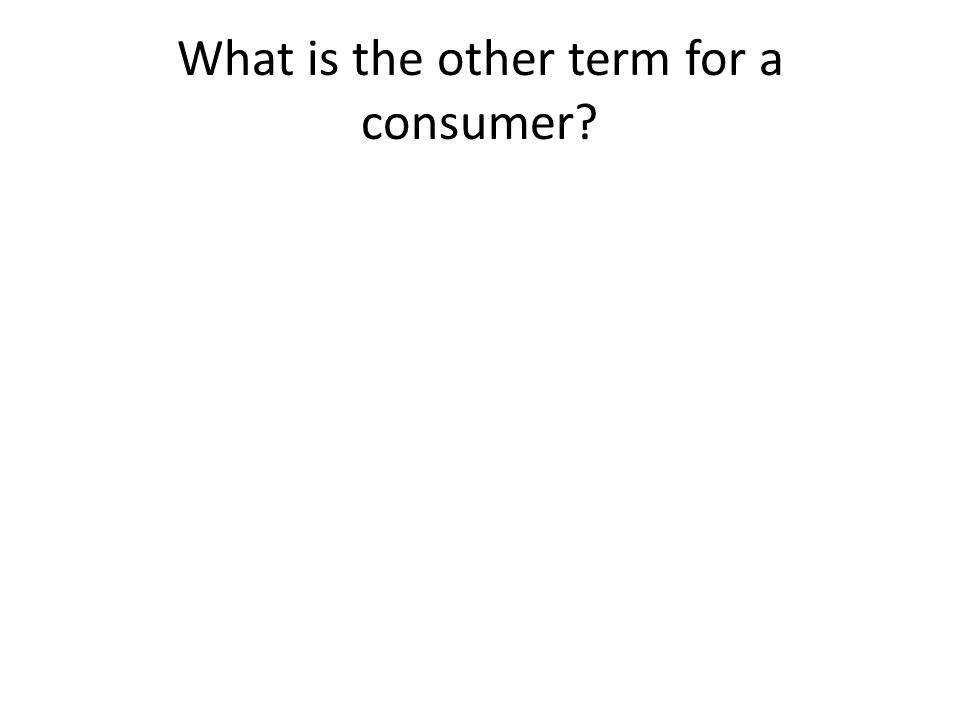 What is the other term for a consumer