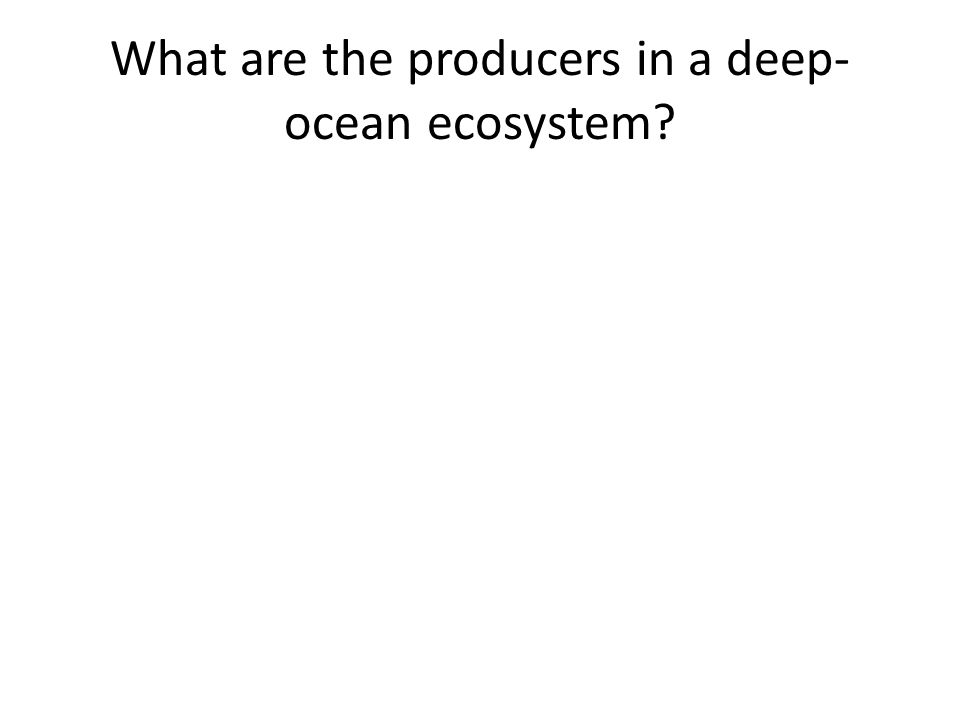What are the producers in a deep-ocean ecosystem