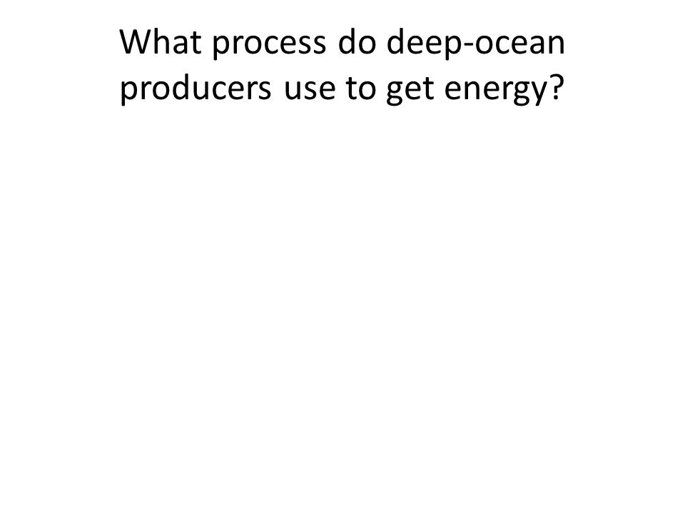 What process do deep-ocean producers use to get energy