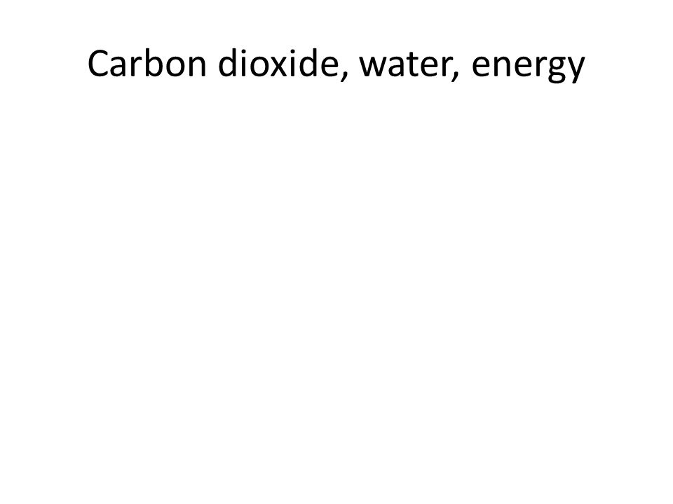 Carbon dioxide, water, energy