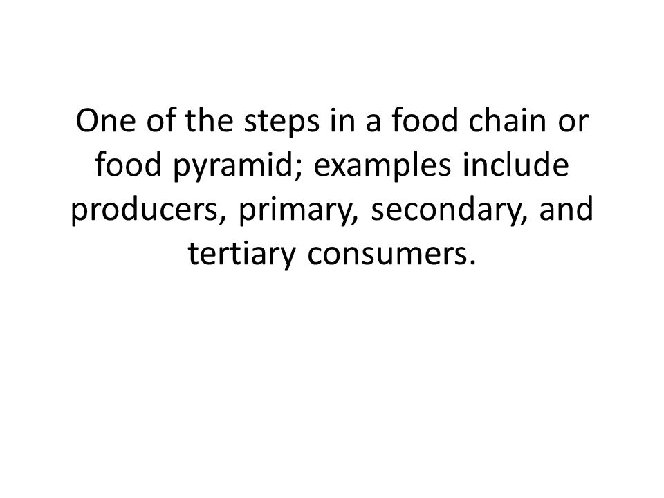 One of the steps in a food chain or food pyramid; examples include producers, primary, secondary, and tertiary consumers.