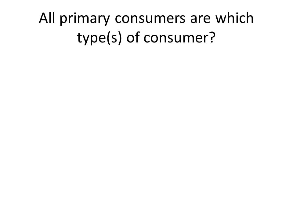 All primary consumers are which type(s) of consumer