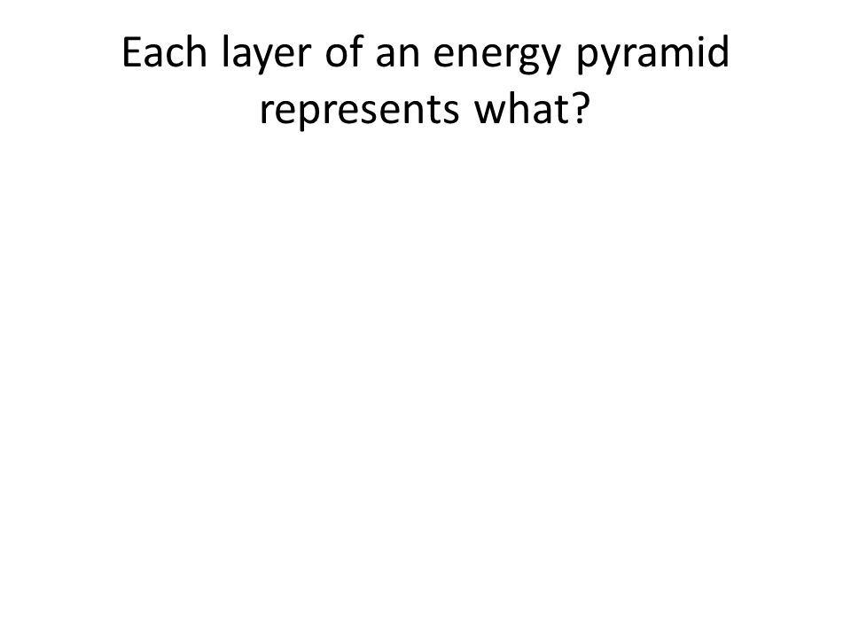 Each layer of an energy pyramid represents what