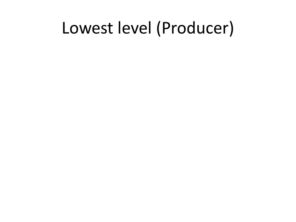 Lowest level (Producer)