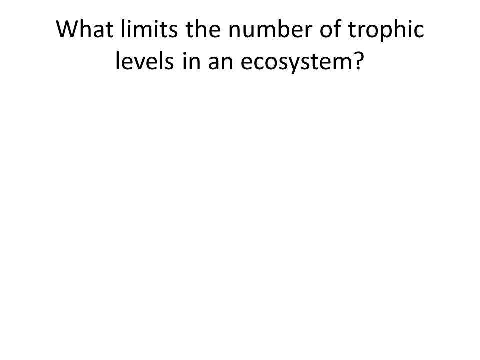What limits the number of trophic levels in an ecosystem