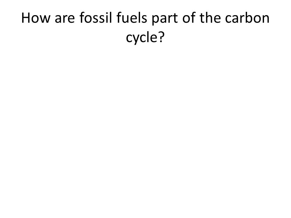 How are fossil fuels part of the carbon cycle