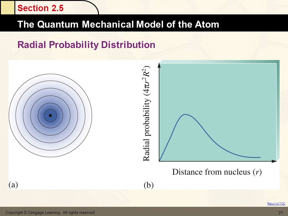 Radial Probability Distribution