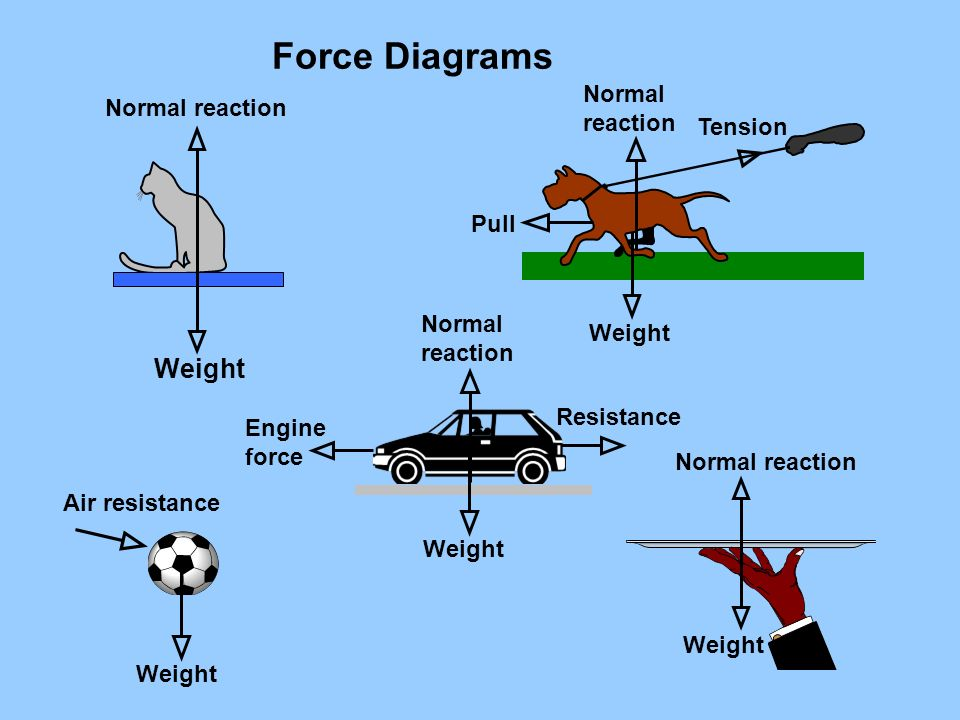 Diagrams Of Forces - Basic Wiring Diagram •