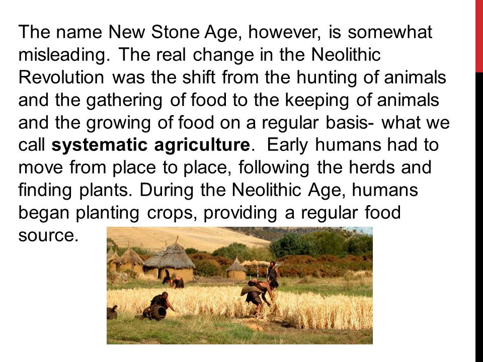 what revolutionary development marked the neolithic age