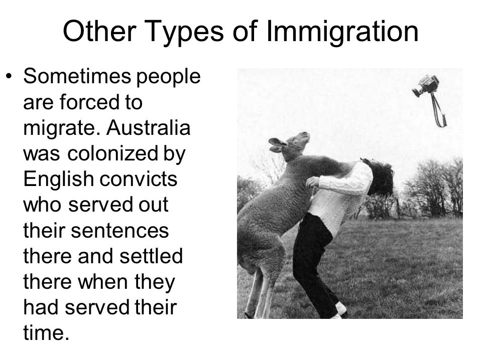 Other Types of Immigration