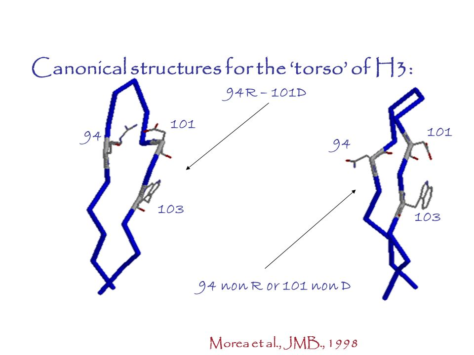 Canonical structures for the 'torso' of H3: