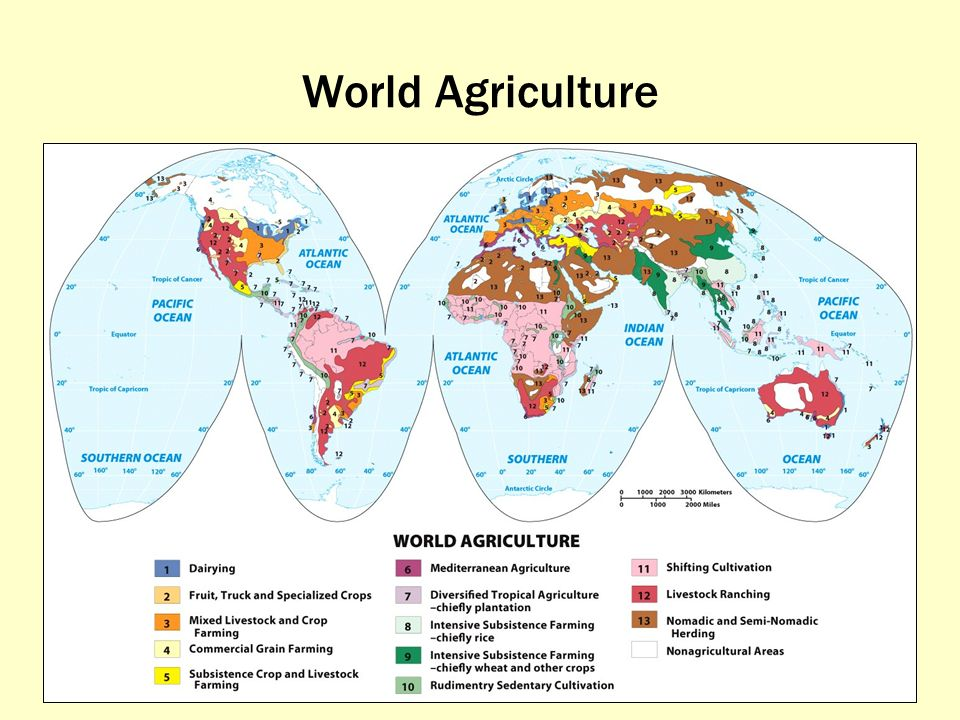Agriculture World Map.What Is The Global Pattern Of Agriculture And Agribusiness Ppt