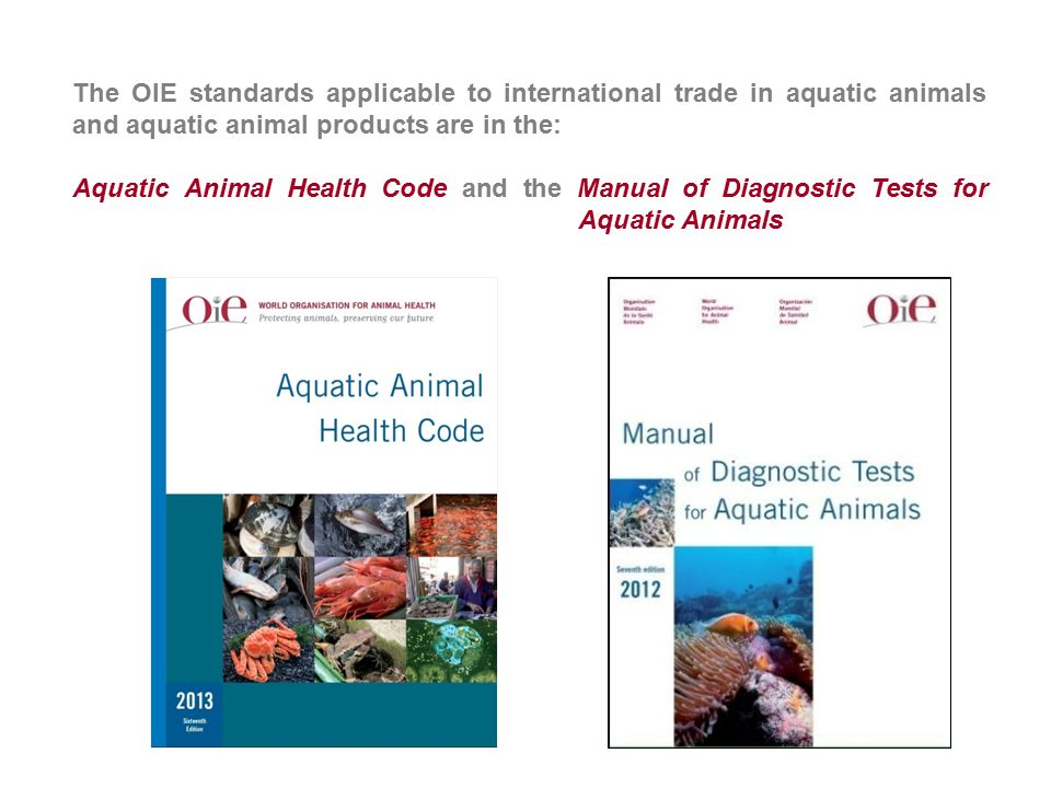 OIE Aquatic Animal Health Code and - ppt video online download