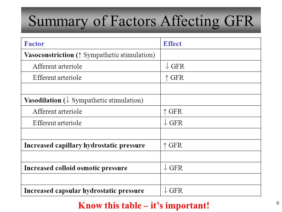 Anatomy and Physiology Part 3: Urine Formation, GFR, Control