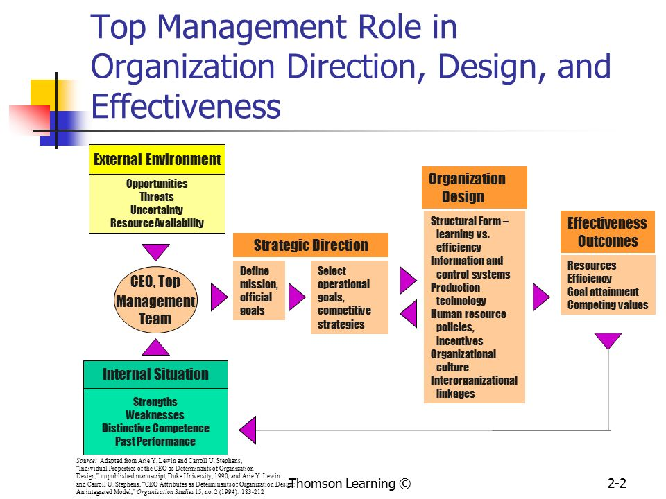 Strategy Organization Design And Effectiveness Ppt Video Online Download