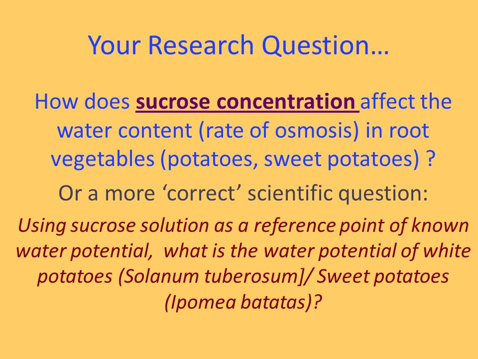 how does sucrose concentration affect osmosis in potato cells
