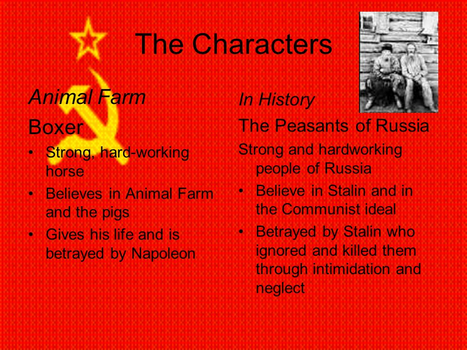Animal Farm A Study In Parallels Ppt Download