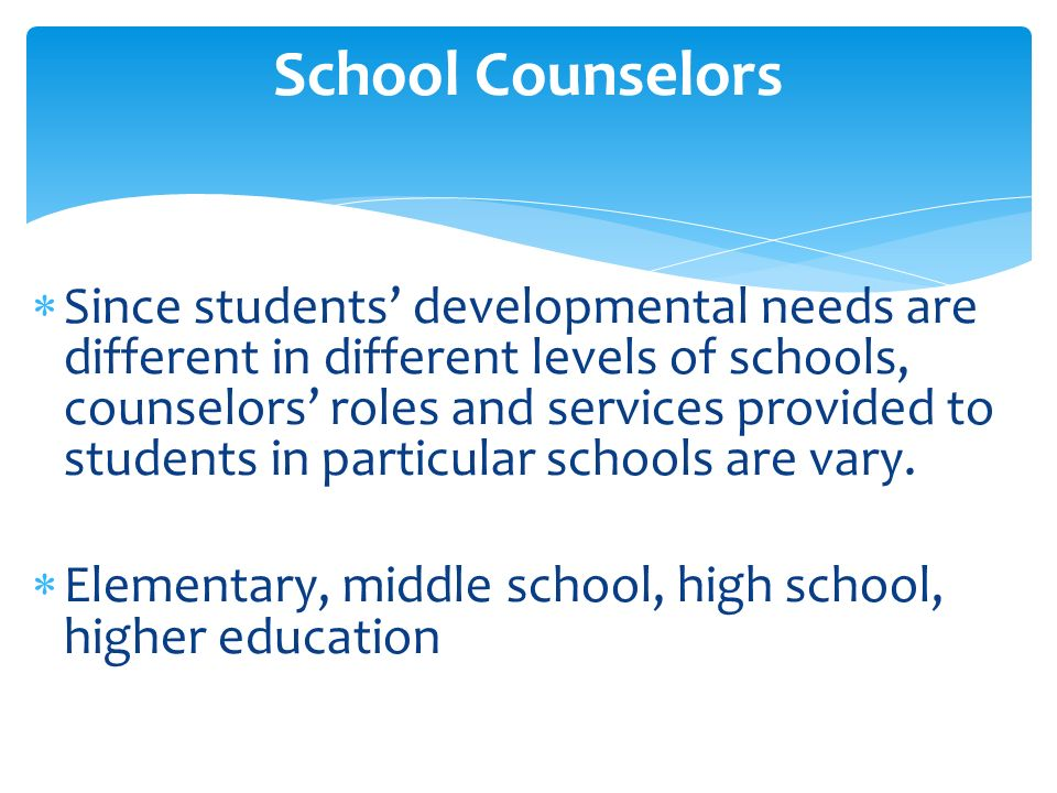Role And Function Of Counseling Guidance Team Ppt Video Online