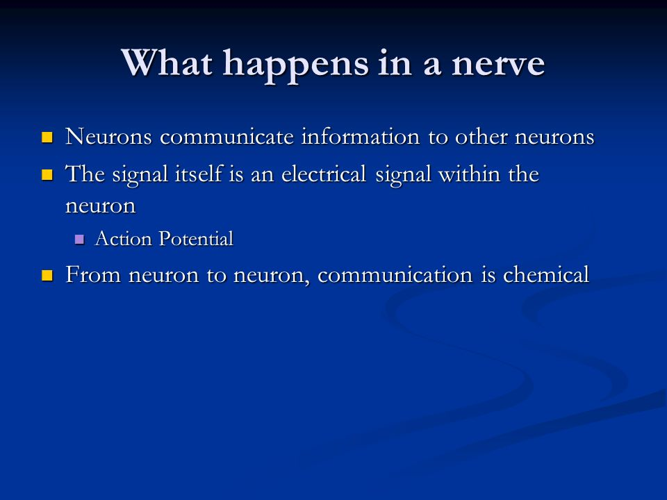 What happens in a nerve Neurons communicate information to other neurons. The signal itself is an electrical signal within the neuron.